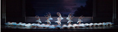 Swan lake (Act II)