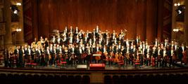 Organico orchestra